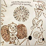 NEW Devendra Banhart - Rejoicing In The Hands (CD)