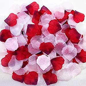JEMONG 3000Pcs Assorted Mixed Silk Rose Petals Artificial Flower Petals for Weddings, Events and Decorating