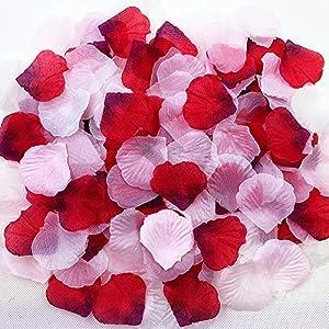 ZiMeng 3000Pcs Assorted Mixed Silk Rose Petals Artificial Flower Petals for Weddings, Events and Decorating