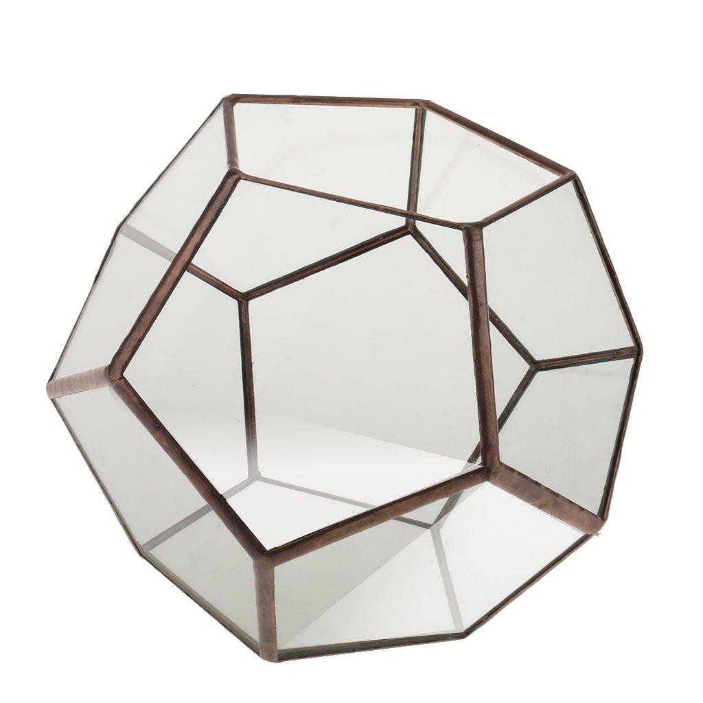 10 10cm 10 SunniMix Contenitore Geometrico di Vaso della Pianta di Terrario di Vetro del Muschio della Felce Geometrica per La Decorazione di Natale