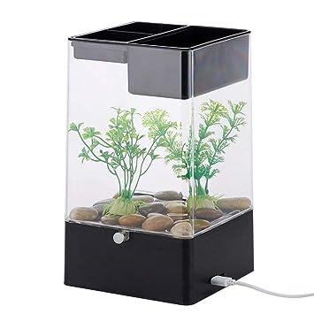 Blue-Yan Aquarium Tank Starter Kit para Peces camarón con ...