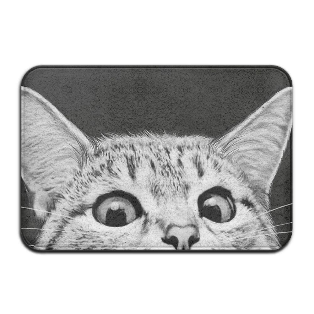 JJHOUSE Cat Face Anti Slip Welcome Door Mat Non Slip Indoor/Outdoor Doormat 24 X 16
