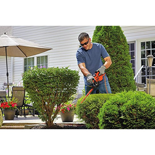 BLACK+DECKER BEHT150 Hedge Trimmer by BLACK+DECKER (Image #2)