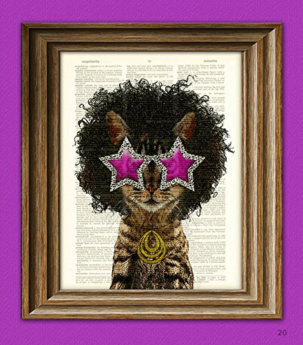Funky Cat with 70's Star Sunglasses and Funkadelic Afro illustration beautifully upcycled dictionary page book art - Sunglasses Illustration