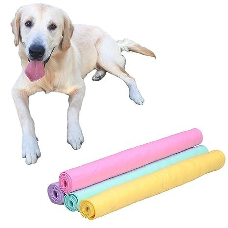 Sotoboo - Toalla para Perro, Muy Absorbente, tamaño Grande, Secado rápido, Toalla