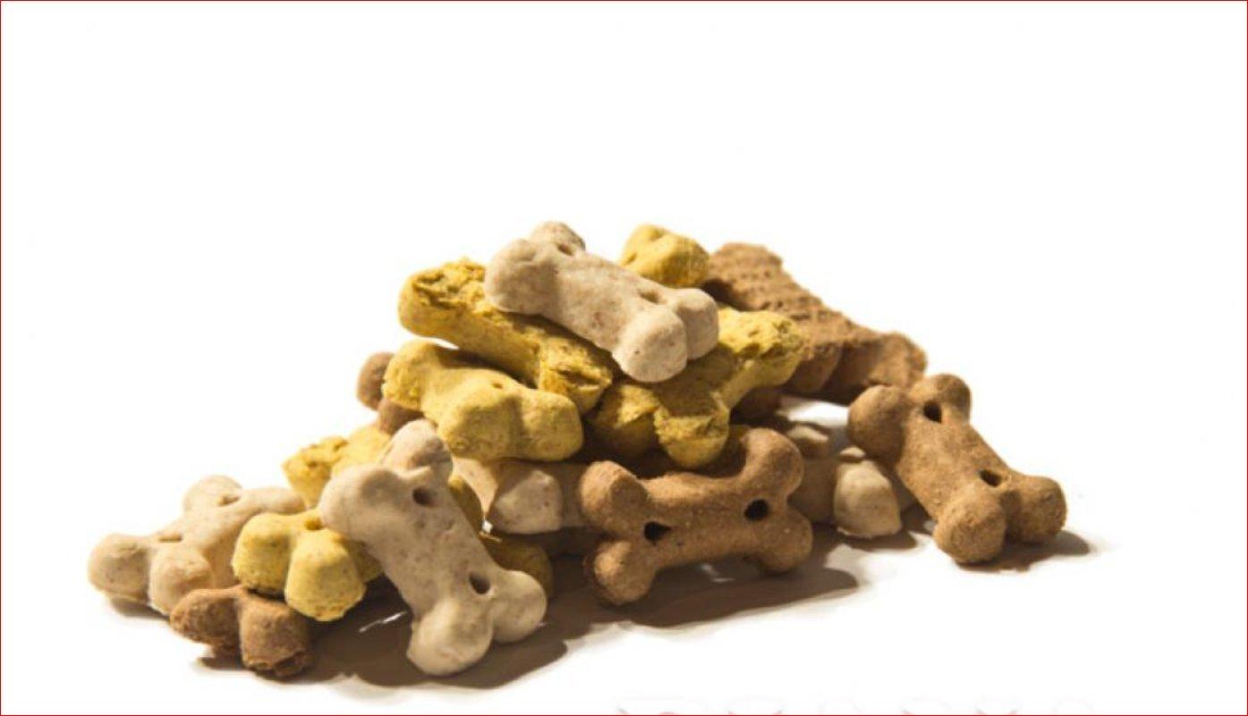 1 kg Hundebiskuit Mono Knochen Puppy-Mix Hunde Leckerlis jetzt neu in Eimer Diana