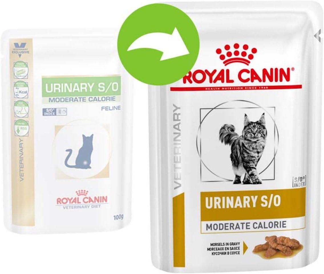 Royal Canin Feline Diet Urinary S/O - Calorías moderadas para ...