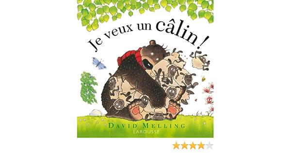 JE VEUX UN CÂLIN: Amazon.ca: MELLING,DAVID: Books