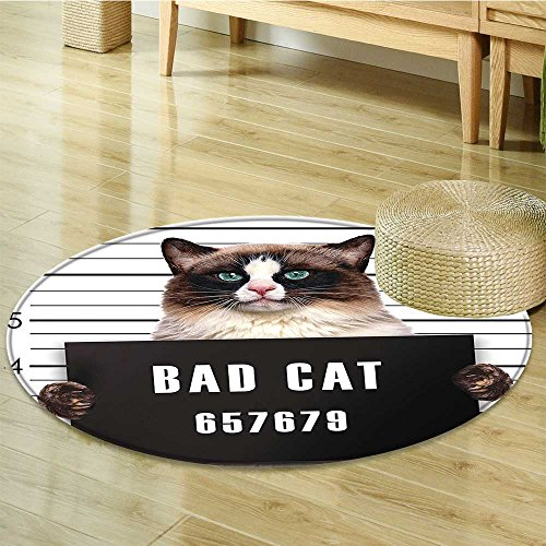 Anti-Skid Area Rug Bad Gang Cat in Jail Kitty Under Arrest Criminal Prisoner Soft Area Rugs-Round 24