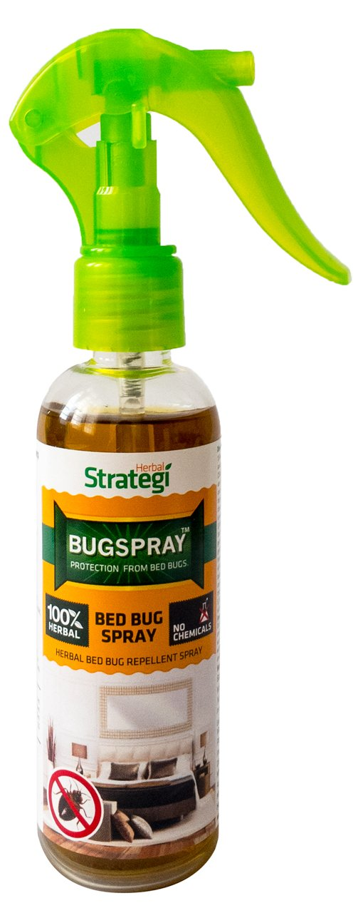 bedbugsupply bug residual pinterest sprays protect spray our repellent on treatment long best lasting bugs against images bed with treatments