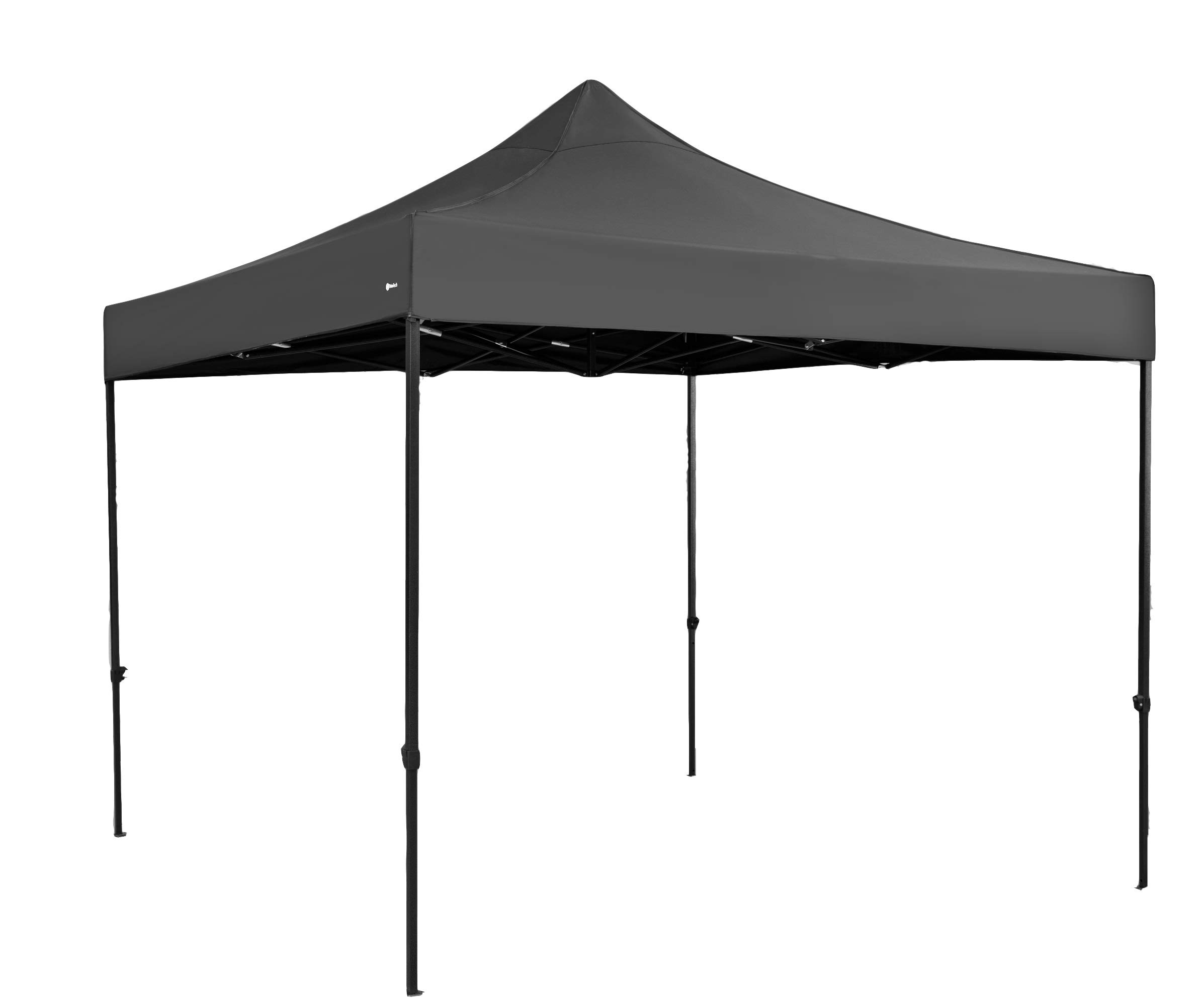 TrioTech Premium Canopy Tent 10x10 Feet Canopy - Easy to Set Up - UV Coated and Waterproof - Includes Carry Bag and Installation Manual