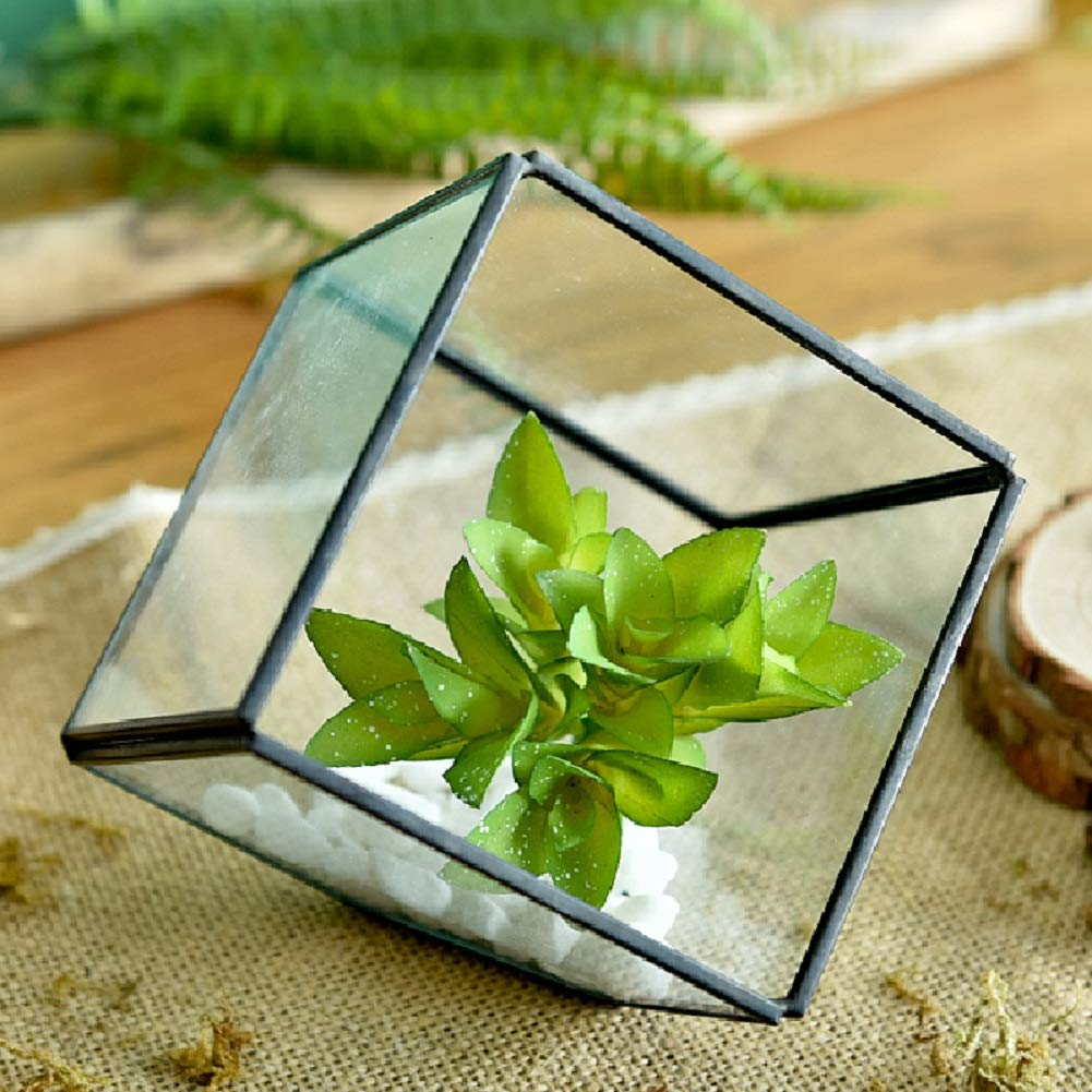 12 17 cm Succulents Planter pot Modern Artistic Clear Glass Geometric Terrarium Four-surfaces Diamond Succulent Fern Moss Air Plant Terrarium Box Window Display Asvert 12