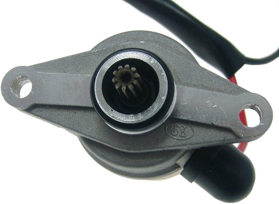 2extreme Anlassermotor Kompatibel Für Znen Sun Iv Vpa Zn50qt 11 Zn50qt A Zn50qt E Zn50qt H Zn50qt Hs 50cc Roller Auto