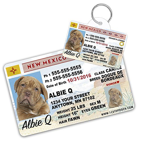 New Mexico Driver Licence Custom Dog Tags for Pets (2) and Wallet Card - Personalized Pet ID Tags - Dog Tags For Dogs - Dog ID Tag - Personalized Dog ID Tags - Cat ID Tags - Pet ID Tags For Cats