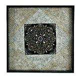 NOVICA Decorative Wood Eggshell Mosaic Tray, Black, 'Starry Sky'