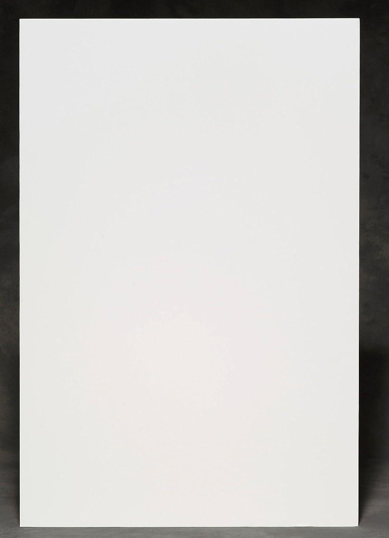 カートンあたりエルマーズ750173ホワイトポスターボード28×22 50 B0013CDHYU