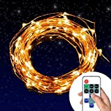 Eastchina® | Warm White Dimmable Led String Lights, Led Copper Lights,led Starry Lights, Copper Wire Led String Lights with Dimmer & Adapter, Beautify Your Patio, Deck, Front Porch, Family Room, Living Room, Kitchen,for Holiday,party,chrismas Celebration