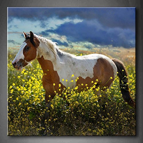 First Wall Art - Painted Pony A Choctaw Horse Walks Through A Field Of Yellow Mustard Plants Wall Art Painting Pictures Print On Canvas Animal The Picture For Home Modern Decoration (Stretched By Wooden Frame,Ready To Hang)