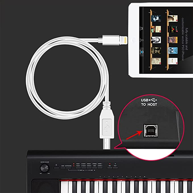Amazon usb 20 cable type b connection cable converter keyboard amazon usb 20 cable type b connection cable converter keyboardaudio interface 33ft musical instruments fandeluxe Images