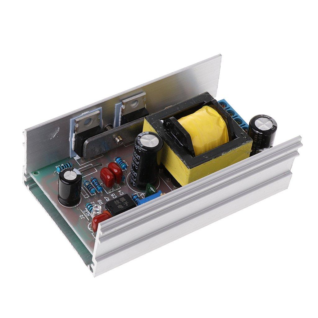 zhiwenCZW DC12V zu DC 200-450V 70W Hochspannungswandler Boost Step Up Power Supply Board