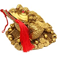 Amperer Brass Feng Shui Money Frog Three Legged Wealth Traditional Frog Money Toad Statue with Set of 5 Lucky Charm…