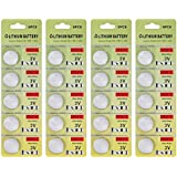 Fortune CR2016 3 Volt Lithium Coin Battery - Retail Packaging (Pack of 20)