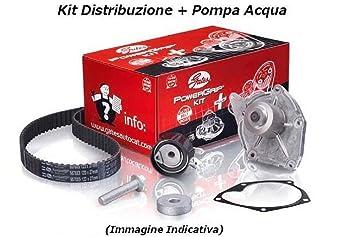 Gates k055569 X S kit Distribución + Bomba Agua Seat Leon (1P1) 1.9 TDI 77 kW: Amazon.es: Coche y moto