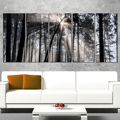 Designart Sunbeams Through Black White Forest Canvas Wall Art Print-60x28 5 Piece-PT9987-401, 60x28-5 Equal Panels ()