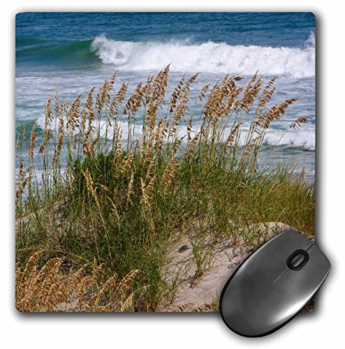 Sea Oats On Sand Dune  Outer Banks  North Carolina  Atlantic Ocean    Mouse Pad  8 By 8 Inches  Mp 189591 1