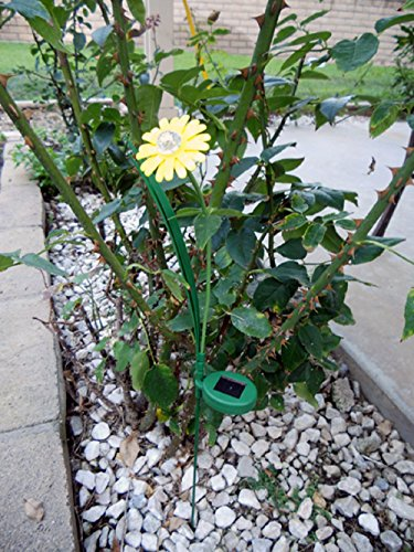 Gerbera Yellow Color Paddle Daisy Flower Solar (Saving Small Outdoor Post Mount)