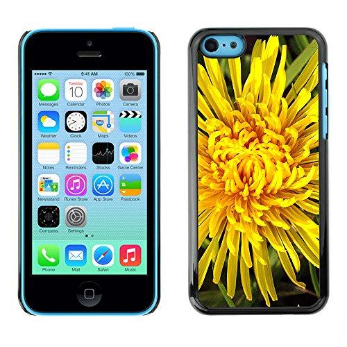 Premio Sottile Slim Cassa Custodia Case Cover Shell // F00004112 une fleur // Apple iPhone 5C