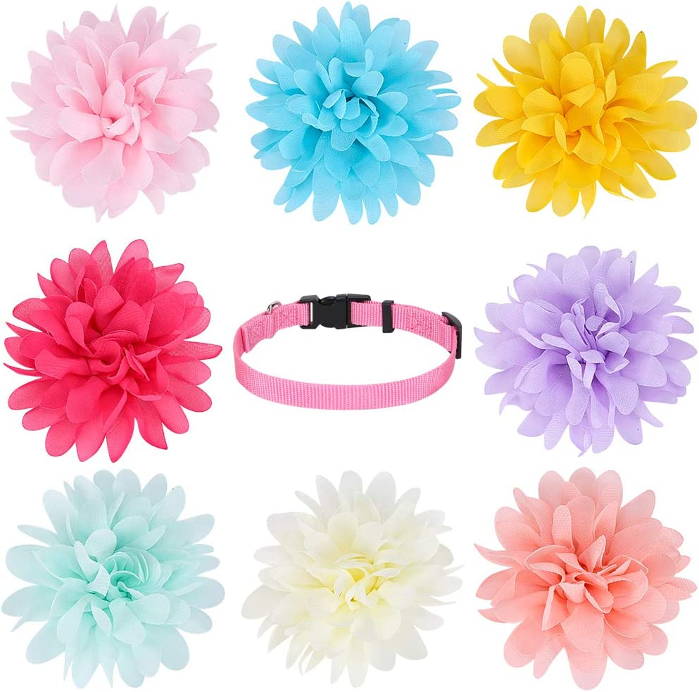 KOOLTAIL Dog Collar Flowers Accessory, 8 Pack with a Basic Collar - Pet Charms Flower Slides Attachment Decoration for Dogs & Cats : Pet Supplies