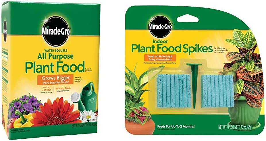 Miracle-Gro Water Soluble All Purpose Plant Food, 10 Lb & Indoor Plant Food Spikes, Includes 48 Spikes - Continuous Feeding for All Flowering and Foliage Houseplants - NPK 6-12-6, 1 Pack of 48 Spikes