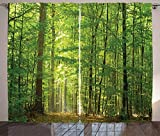 Ambesonne Woodland Curtains, Deciduous Forest Trees in Summertime Foliage Sun Rays Romantic Holidays Scenic Image, Living Room Bedroom Window Drapes 2 Panel Set, 108' X 84', Green Yellow