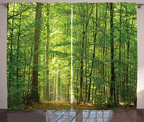 Ambesonne Woodland Curtains, Deciduous Forest Trees in Summertime Foliage Sun Rays Romantic Holidays Scenic Image, Living Room Bedroom Window Drapes 2 Panel Set, 108