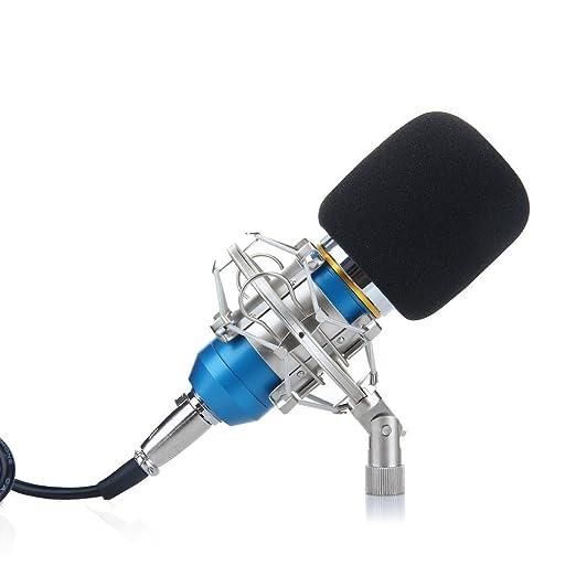 9 opinioni per Ohuhu® Pro Microfono a Condensatore Studio Registrazione con Supporto Metallo
