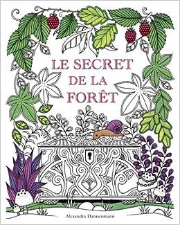 Coloriage Anti Stress Nature Et Decouverte.Amazon Fr Le Secret De La Foret Cherche Les Bijoux Caches
