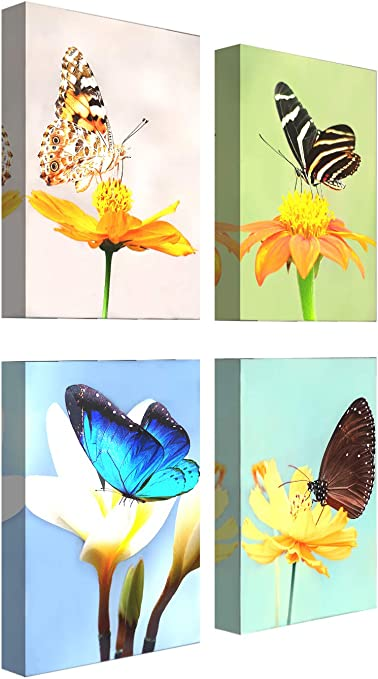 Amazon Com Canvas Wall Art For Living Room Butterfly On Flower Decor Painting Blooming Florals Pictures Print Artwork 12x16inch X 4pcs Posters Prints