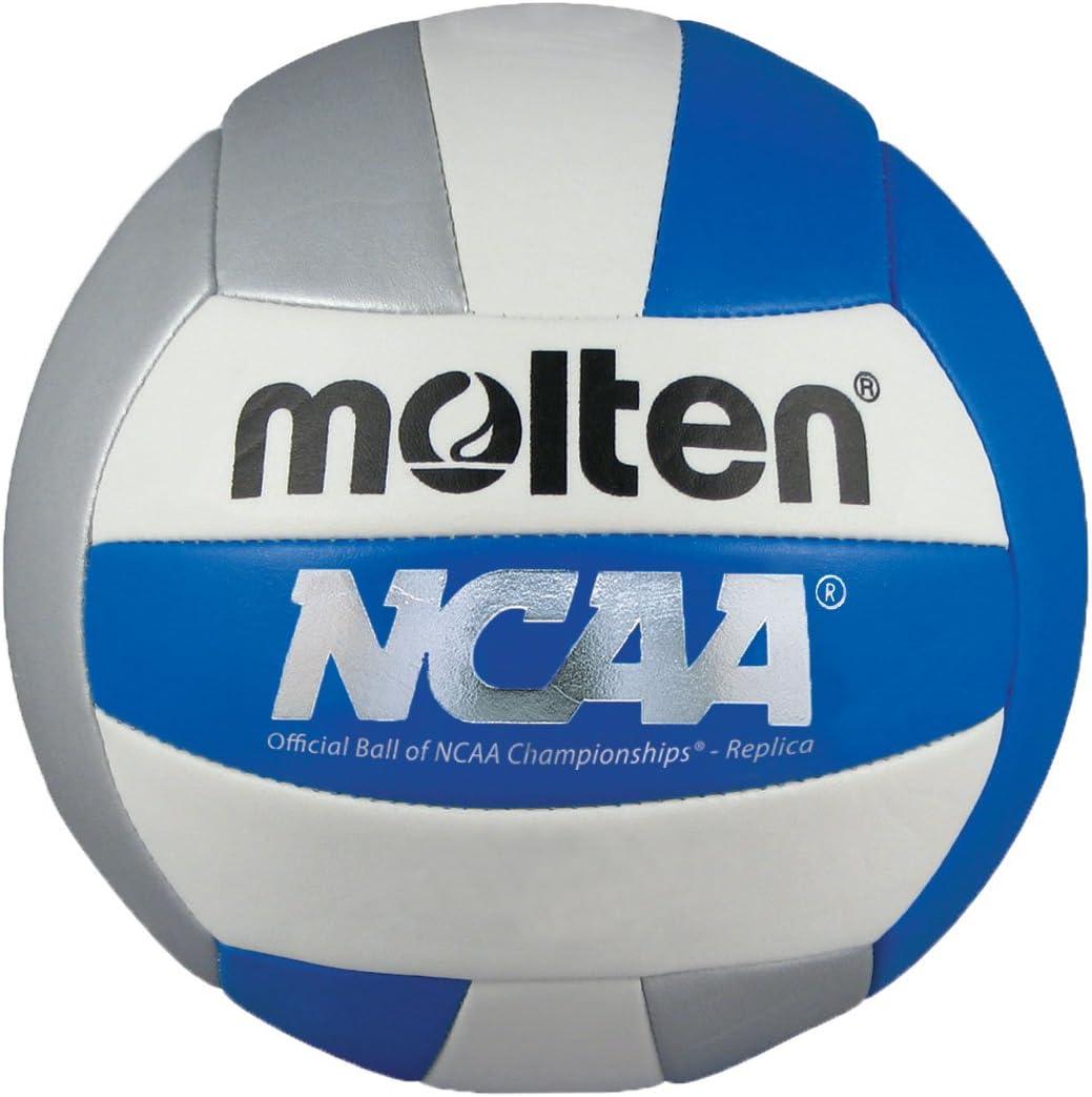 Molten Recreationalバレーボール 青/銀/白い