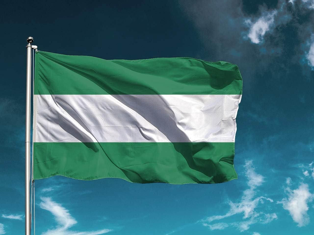 G | Bandera Andalucía Sin Escudo | Medidas 100cm x 70cm | Fácil colocación | Decoración Exteriores (1 Unidad): Amazon.es: Hogar