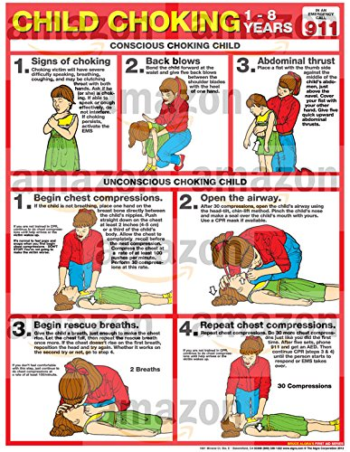 Choking for Children Laminated Poster