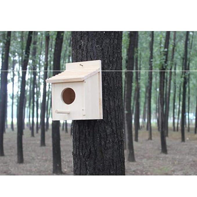 Sharplace Caseta de Nido de Pájaros de Madera Colgando Herramientas de Jardinería Decoración Hogar: Amazon.es: Hogar