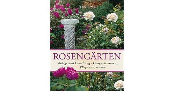 Rosengarten Anlage Und Gestaltung Geeignete Sorten Pflege Und