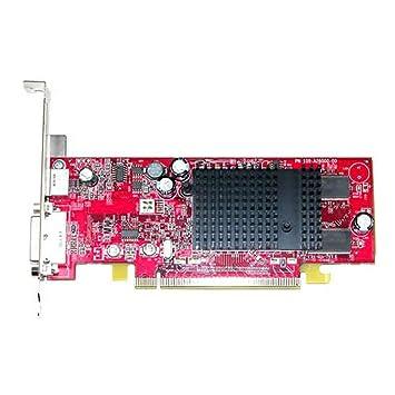 Amazon.com: ATI Radeon X300 64 MB DVI, TV-out PCI-E tarjeta ...