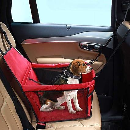 Panier chien voiture
