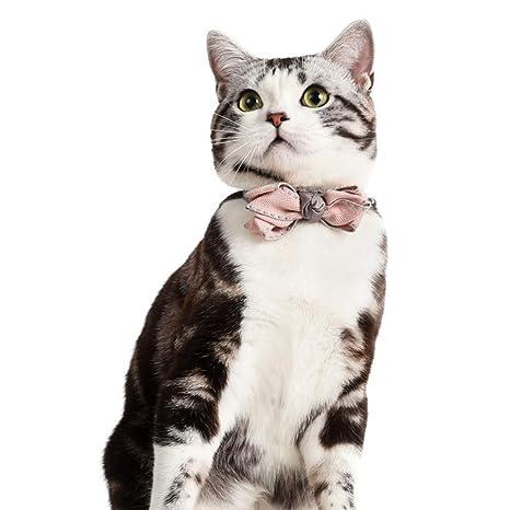 Ofanyia - Corbata de Cuello para Mascota, Perro, Gato, pre-Atada ...