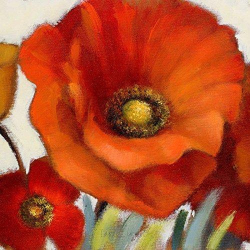 Poppy Splendor Square 1(Closeup) Poster Print by Lanie Loreth (12 x 12)
