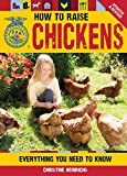 Chicken Breeds: Sex Link, Red Star, and Black Star; Color ...
