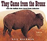 They Came from the Bronx, Neil Waldman, 1563978911