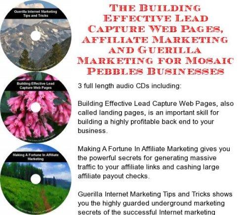 The Guerilla Marketing, Building Effective Lead Capture Web Pages, Affiliate Marketing for Mosaic Pebbles Businesses (Pebble Lead)